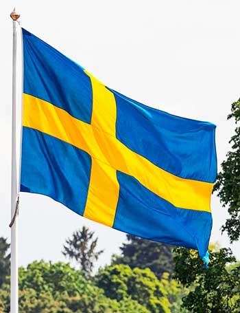 Köp det Svenska flagga. Finns i olika storlek.